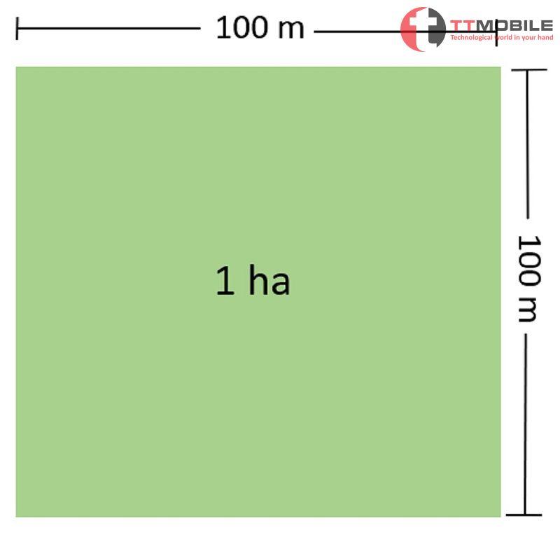 1 hecta bằng bao nhiêu m2?